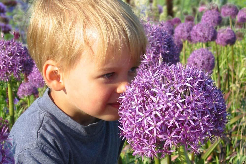 Kinderfreundliche Pflanzen [PRE Foto]