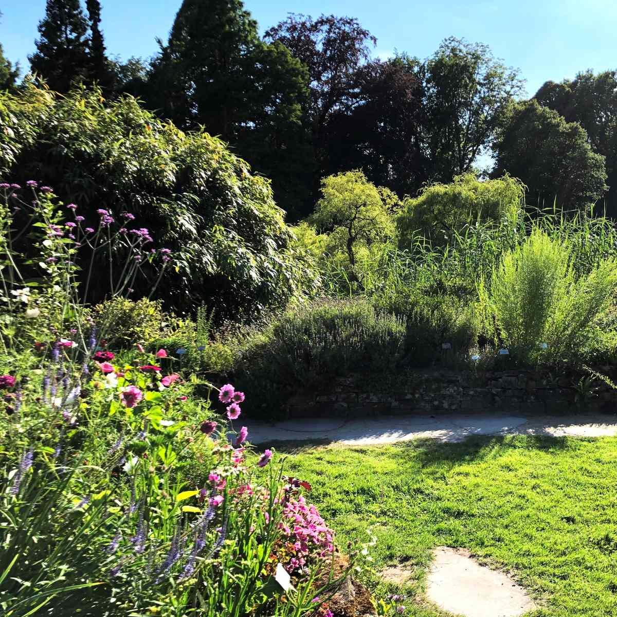 Gärten vielfältig gestalten [GTD Foto]
