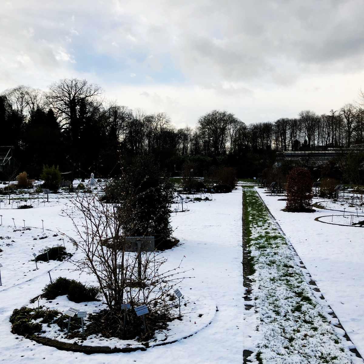 Gartenplanung im Winter [GTD Foto]