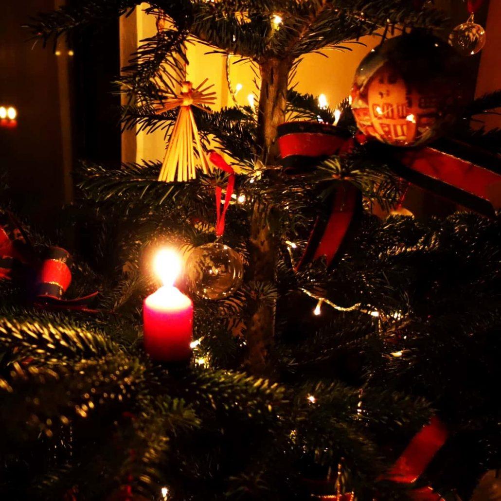 Weihnachtsbaum [GTD Foto]